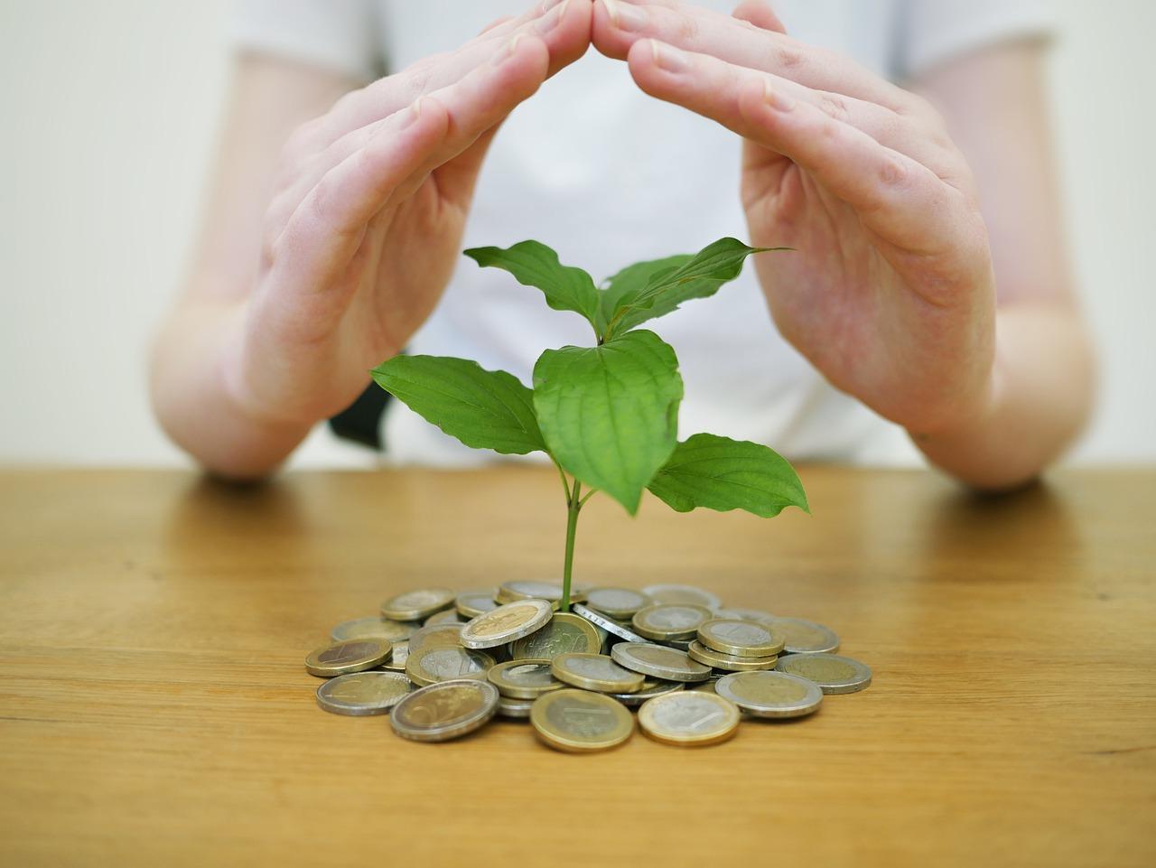 investissez avec tradimaisons